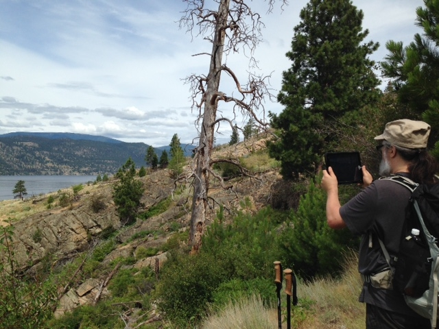 A man records the view from Wild Horse Canyon