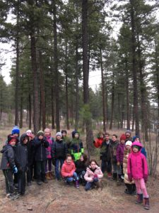 a group of grade 3 students in posing in front of a pondarosa pine forest.